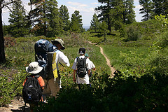 """A hiking family with  each a different easy hiking backpack to carry"""
