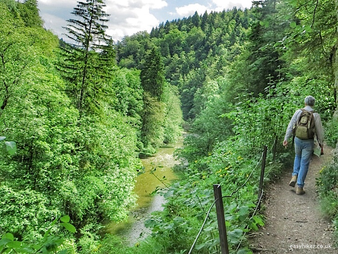 """Hiking the Black Forest Westweg"""