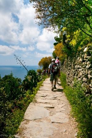 """Italy Cinque Terre Trail"""