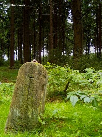 """Stone boundary in the Rennsteig hiking trail in Germany"""