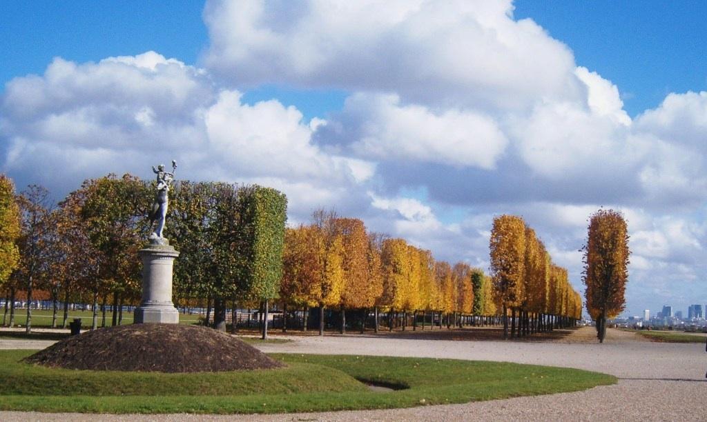 """""""Tree soldiers in the gardens of St Germain en Laye in Paris"""""""
