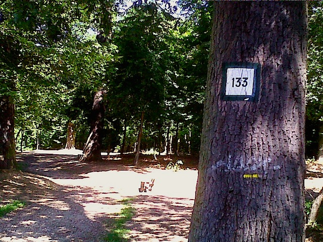 """Trail markings on day hiking near Paris in Etang """