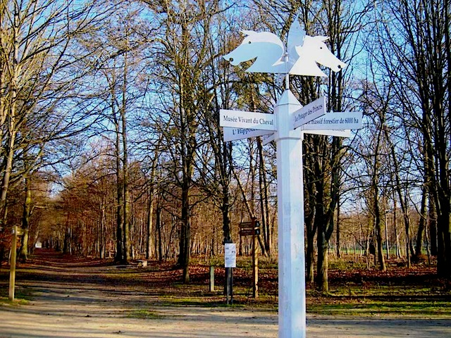 """Direction pole on hiking trail in Chantilly"""