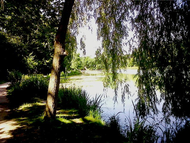"""""""Etang - picturesque day hiking near Paris for anyone"""""""