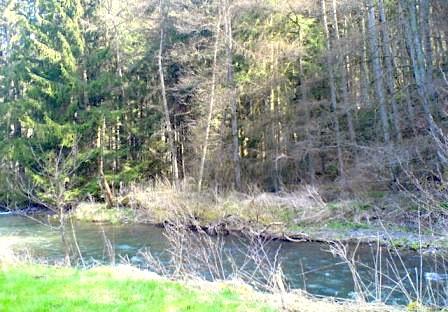 """""""the Lieserpfad seen when hiking Eifelsteig in Germany"""""""