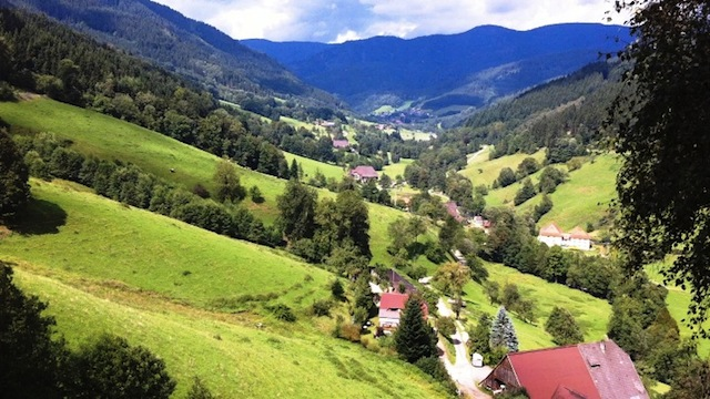 """A valley on a Black Forest Hike"""