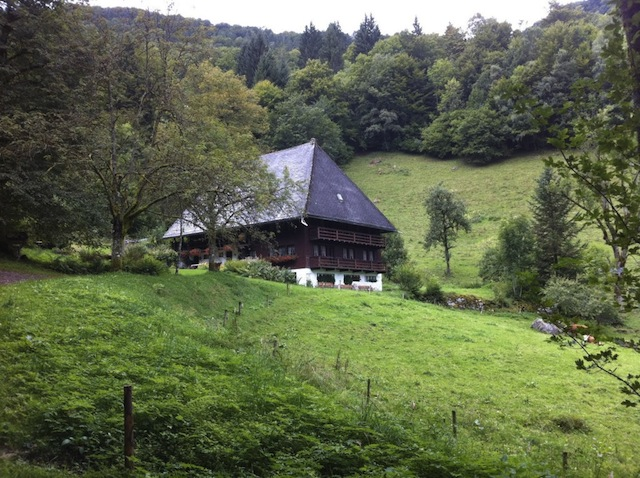 """Farm house nestled on a valley on a Black Forest hike"""