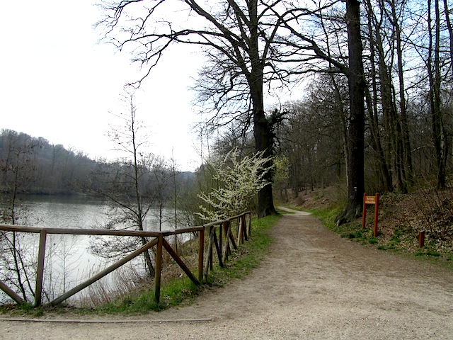 """Etang de la Geneste in the hiking trail in the Forest of Versailles"""