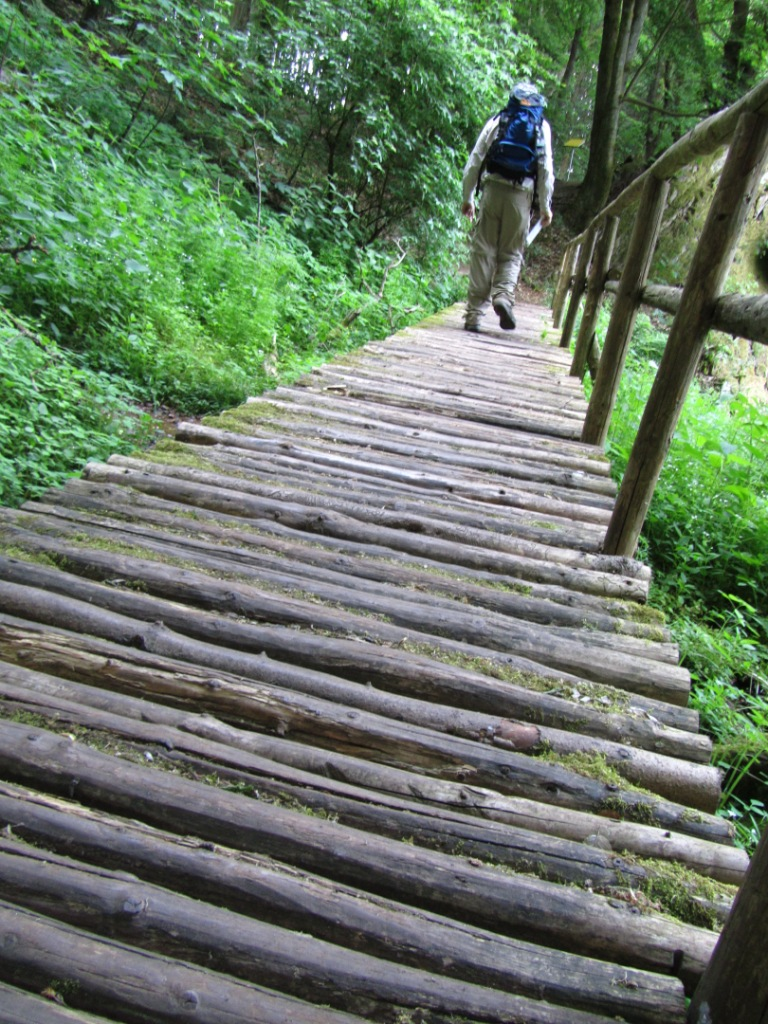 a bridge on a hiking trail one consideration on how German hiking trails graded in Saarland Germany""