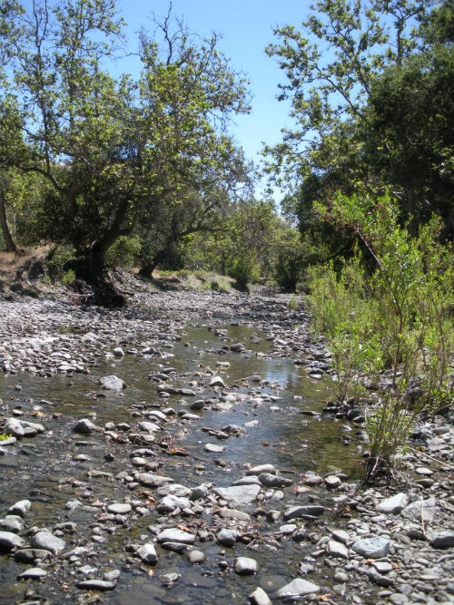 """A trip for easy hiking in Little Yosemite Alameda Creek hiking trail"""