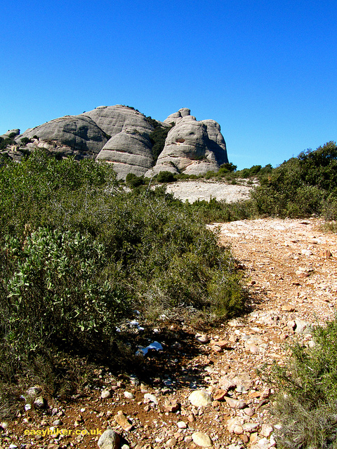 """A stony detour on the easy hiking trail on the Montserrat rocks"""