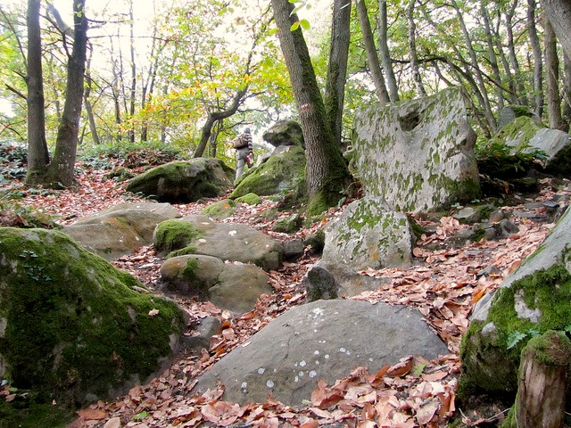"""The stony hill of the Etrechy hiking trail near Paris"""