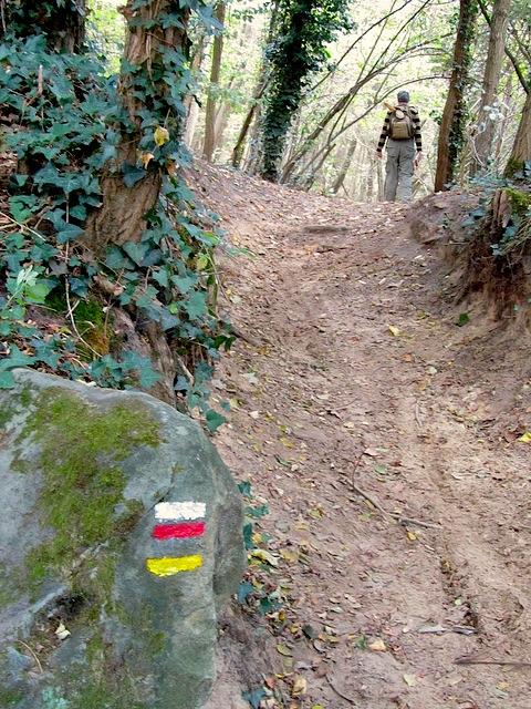 """Trail markings for the Etrechy hiking trail near Paris"""