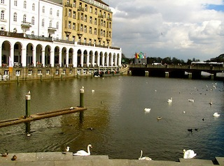 """Swans and ducks on the Binnenalster"""