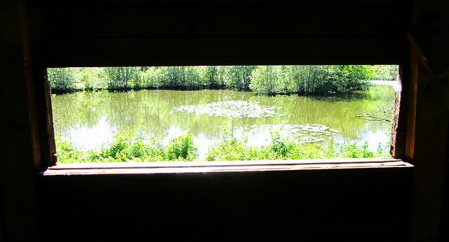 """""""A bird-watching cabin in the Marais de Misery in Ile de France"""""""