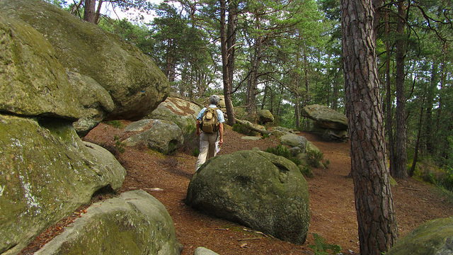 """The rocks of Fontainebleau hiking trail near Paris"""