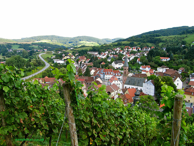 """View of the town of Wolfstein descending on a hiking trip in the Palatinate"""