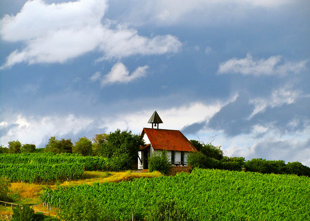 """St Michael's chappel on top of hil among the vineyards in Bad Dürkheim where the largest wine barrel is in the Palatinate Germany"""