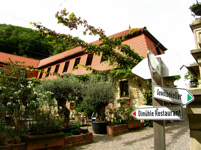 """Stayed two days in a vineyard. Here the entrance to the courtyard of ZumStein with the hotel rooms above it"""