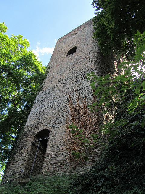 """""""ruins of Alt-Wolfstein on of the two castles in the Palatinate in Germany"""""""