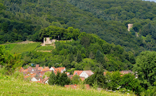 """Alt-Wolfstein and Neu-Wolfstein two castles whose ruins can be seen from the Hoehenweg hiking trail in the Palatinate"""