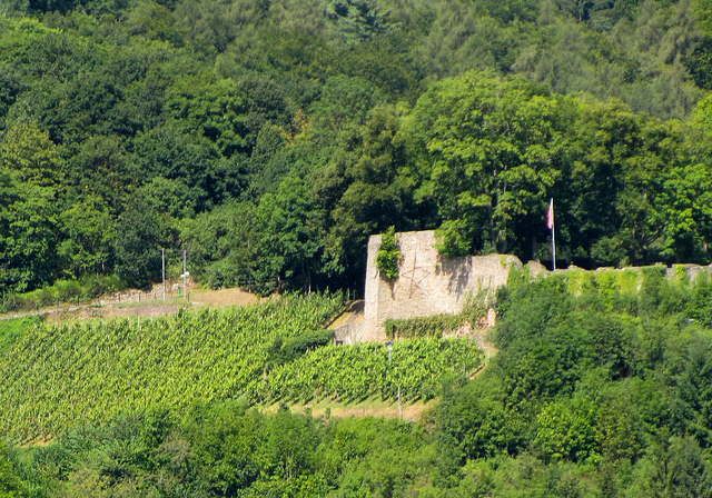 """Alt-Wolfstein one of the two castles and its ruins in the Palatinate Germany"""