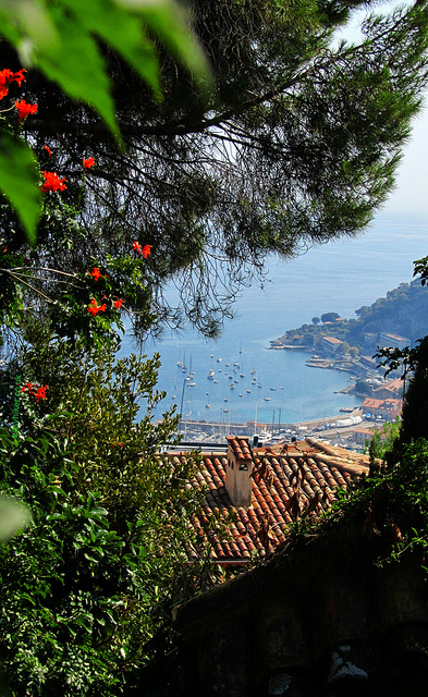 """A view of the harbour of Villefranche-sur-mer from atop a hill in the French Riviera"""
