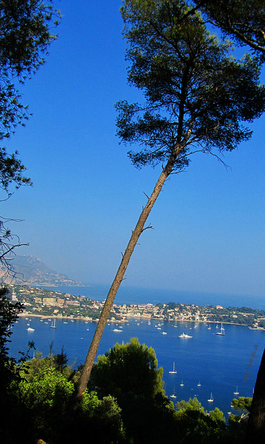 """View from atop the hill of Villefrance-sur-mer over the harbour"""