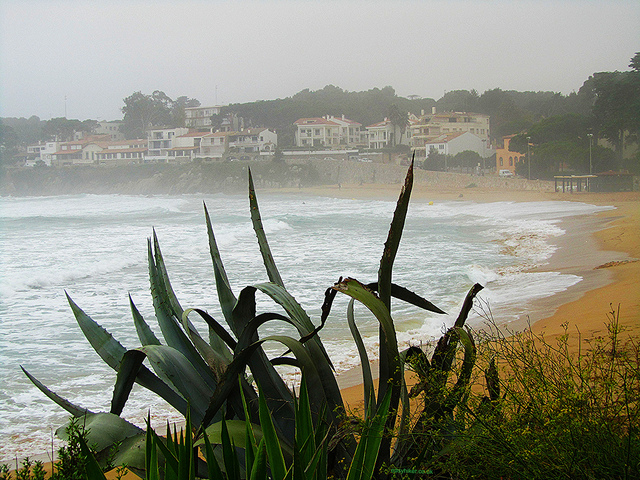 """The beach town of La Fosca on the Cami de Ronda along the Costa Brava in Spain"""