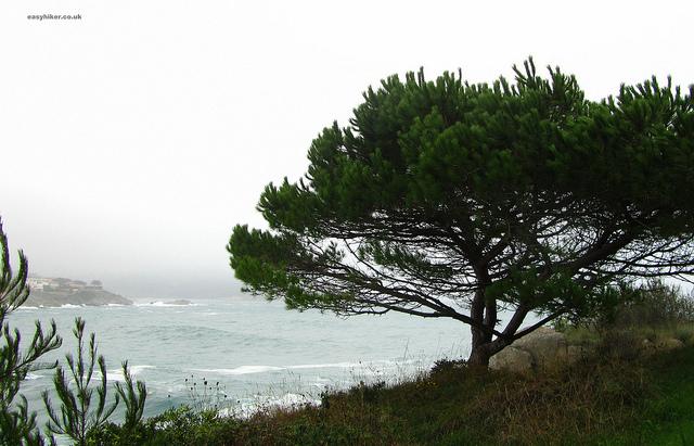 """La Fosca seen from the Cami de Ronda towards Palamos"""