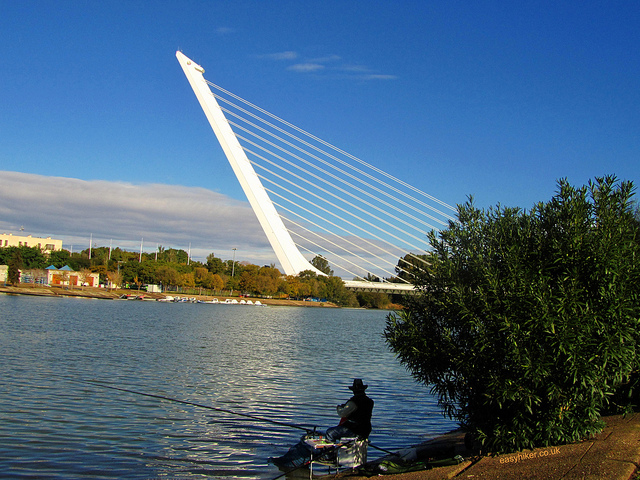 """Alamillo Bridge across the Guadalquivir when walking Seville"""