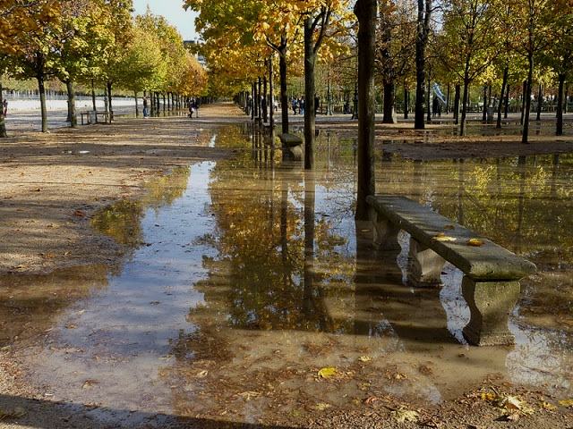 """Jardin des Tuileries Photo by @bbonthebrink"""