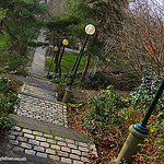 """""""Garden stairway of Belleville Pari"""""""