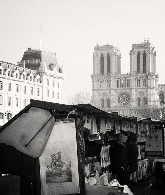 Notre Dame seen along a Paris urban walk along the Seine""