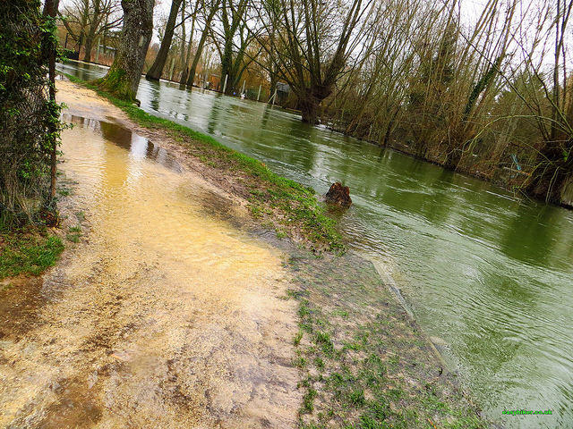 """End of the line for a path of the Marais de Bourges"""