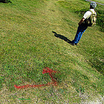 """hiking trail marker painted on grass"""