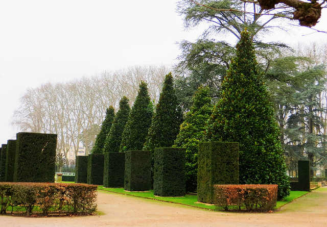 """Cubes and triangle hedges in French gardens """