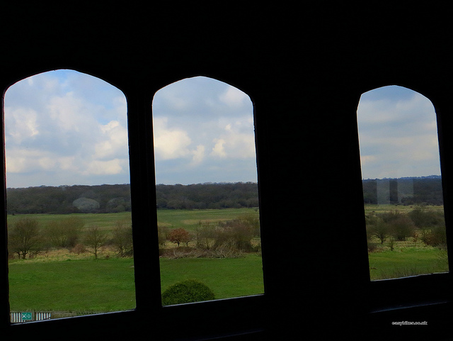 """""""Looking out from the hunting lodeg onto the hunting grounds in Epping Forest"""""""