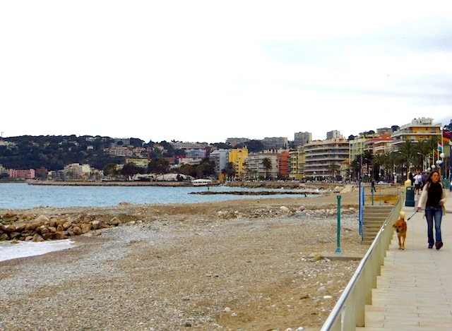 """Go walking with your dog along the beach in the French Riviera"""