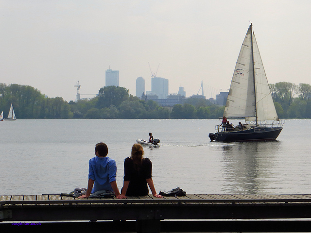 """Skyscrapers of Rotterdam seen from Kralingse Bos"""