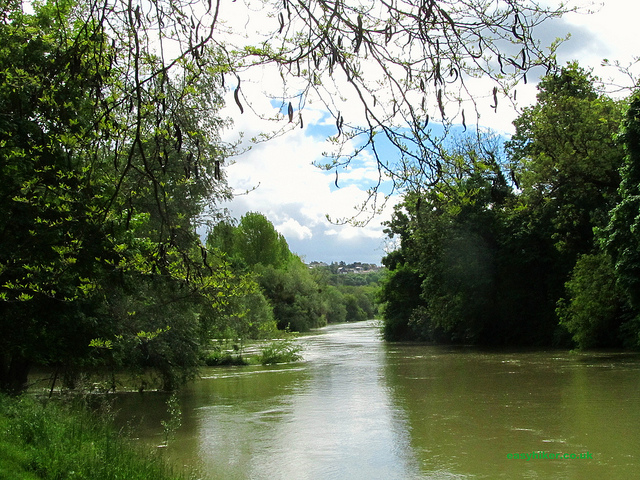 """Walks near Paris by the riverbanks of the Marne"""