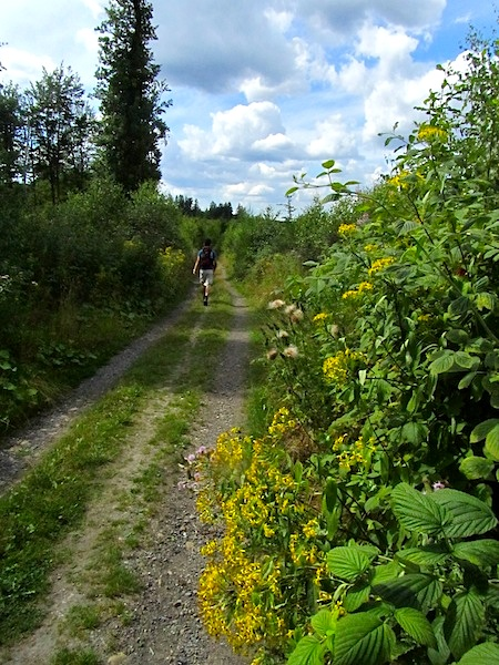 """German hiking trails - Easy Hiker Jr along the open fields of the Drahthandelsweg"""