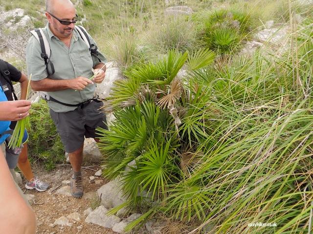 """""""Antonio Marti giving survival tips when hiking in Mallorca"""""""