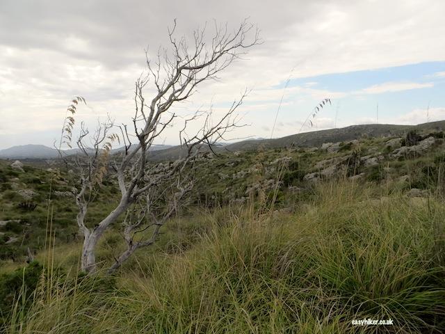 """""""Hiking in Mallorca"""""""