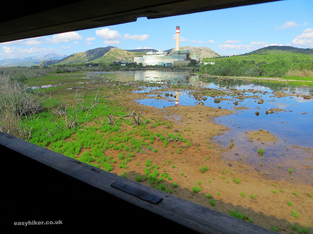 """View of part of the Mallorcan Marshland from a hide"""