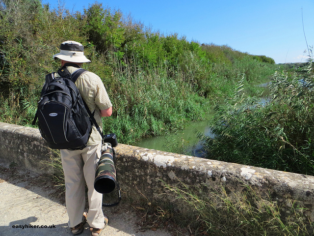 """Serious nature photographers in Mallorcan marshland of S'Albufera """