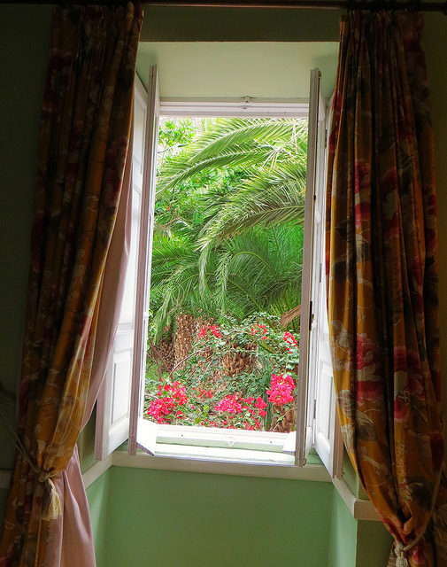 """our room window at Hotel Las Longueras looking out to a garden"""