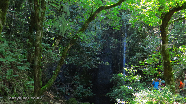 """A tropical forest waterfall in little continent Gran Canaria"""