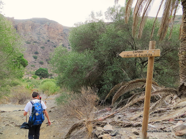 """along the Caldera de Bandama hike for the Gran Canaria Walking Festival"""