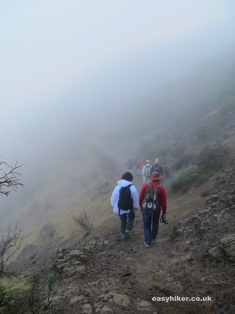 """foggy trail head in the Gran Canaria Walking Festival"""